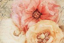 Pretty / by Annie Owen