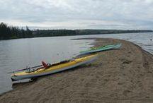 Kayaking / Kayaking  / by Shirley G