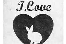 Bunnies / I collect bunnies . Especially those not associated with Easter. / by Karen Starbuck