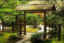 Japanese Garden / Inspiration to my own garden / by sigridur duna hauksdottir