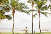 Destination Wedding: The Islands / by Kathryn | Kat and Lavender & One to Wed