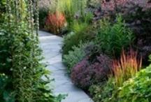 Garden Spaces / by Catherine V. Bainbridge