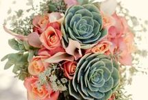 sample bouquets I found / by Diana Wilkinson