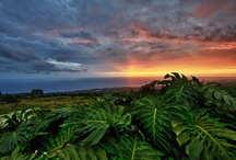 Amazing Sunsets at Holualoa Inn & Surrounding Areas / A breathtaking backdrop for any special event! / by Holualoa Inn