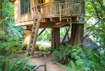 Treehouses are dreamy:) / by Janie Salinger