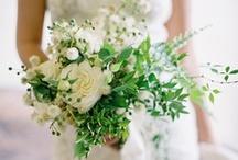 Bouquets / by Petal Pixie -Kim
