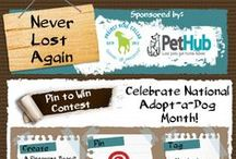 """""""Never Lost Again"""" / Celebrate National Adopt-a-Dog Month (October 2013) and enter PetHub & Project Blue Collar's """"Pin-to-Win"""" Never Lost Again contest! Check out this board to learn how to enter or visit https://www.pethub.com/neverlostagain  / by PetHub gets lost pets home faster."""