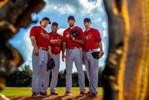 St. Louis Cardinals Fan / Our favorite sports team - ever! / by General Finishes Pinterest