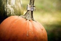 Fall Weddings / by Bella Umbrella