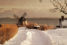 My New England / by Suzanne Camerer