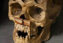 SKELETON CREW tarafından / Skeletons, bones, and art of such./Tamra Kimzey