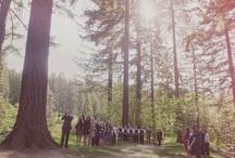 Our Wedding Pinned / by Alison Mazurek