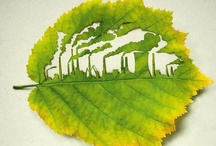 Reduce Your Carbon Footprint / by Just Energy