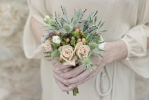 rustic desert - green and peach / For A and MJ / by Alison Mazurek