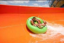 Six Flags / by Hyatt Regency DFW