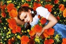 film / my favorites / by kennedy lees