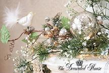 Christmas Decor / by Jenny Stern