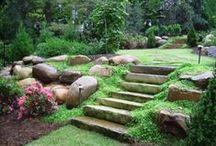Backyard Garden Landscape/Hardscape Ideas / by Katerina Syntelis