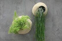 Indoor Garden Room / by Katerina Syntelis