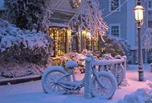winter / by Janis Mysinger