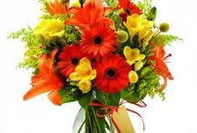 Orange Flowers / Brighten up your home or office with bold, orange blooms. More from the the experts at www.aboutflowersblog.com.  / by AboutFlowers