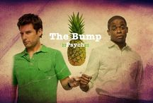 PSYCH / Psych is my FAVORITE show / by Marta Raynolds ♡