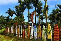 Maui & Surfing / Happiness / by Wailea Maui