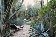 Outdoor Living / by Michele Adams