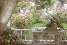 Secret Gardens / by Wendy de Rooy