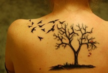 Tattoos & Piercings / by Soha Rahimi