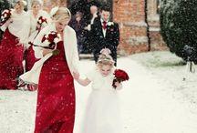 Wedding - The Dress / by Julie Arsène Talbot