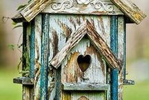 Bird house's / by Claudia Madero