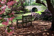 ~Garden Seats~ / by Marla Corson