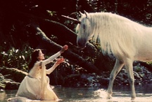 Unicorns realm~ / by ☽Dryad☾ of the tangled forest
