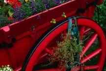Garden Treats and Retreats / Garden delights, and wonderful garden spaces / by Deja Vue Designs