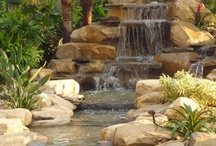 Backyard Waterfalls by Waterfalls Fountains & Gardens Inc. / Backyard Waterfalls / by Waterfalls Fountains & Gardens Inc.