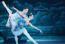 The Nutcracker / by The Washington Ballet