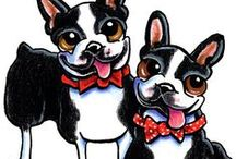 "Dogs : Boston Terriers / Everything relating to the ""American Gentleman"" / by Off-Leash Art™"