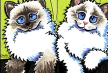 Cats : Ragdoll | Ragamuffin / Showing love for the Ragdolls & Ragamuffins! / by Off-Leash Art™