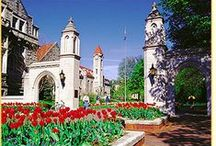 Indiana University / by Emily Horkay