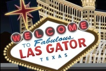Snappy Visits VEGAS! / Snappy is a very hard-working gator and occasionally likes to take a fun-filled holiday. Check out the images he sent us from Las Gator, a.k.a. Swamp Vega$! (Plus Magic videos in the final pin!) / by HostGator