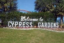 Cypress Gardens / by Markus Smith