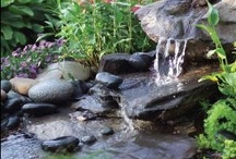 Outdoor Water Features / Ponds and fountains / by Crystal Risch