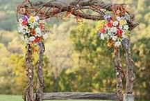 Wedding stuff / by Erin McLaughlin