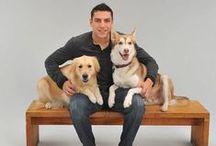 Hockey Pets / Hockey + pets = Love / by Janelle Roberts