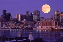 Montréal  / C'est magnifique !!.................................PLEASE, NO MORE THAN 10 PINS WITHIN 24 HOURS / by Princess Coco