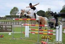 Show Jumpers / by LuLu The Sweet Carolina Girl