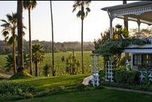 Stay in Sonoma / Sonoma Hotels, Bed & Breakfasts, Resorts and other charming places to stay in Sonoma Valley, Healdsburg, Santa Rosa, Petaluma and other cities of Sonoma County. / by Sonoma.com