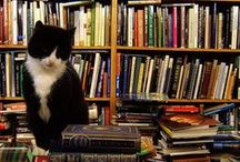 BOOKS / by Marlene Campbell