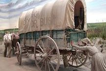 Wagon Train Travel / Covered wagons pulled by oxen, sometimes by mules or horses, moved overlanders west in search of a new beginning. This is the backdrop for my newest Christian Historical Fiction series--HEARTS SEEKING HOME. #chrific / by Mona Hodgson